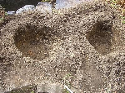 植え替え用穴